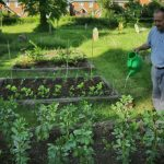 Caring for the vegetables